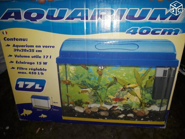 Mon tout premier combattant... questions sur son aquarium ! 5712ff10