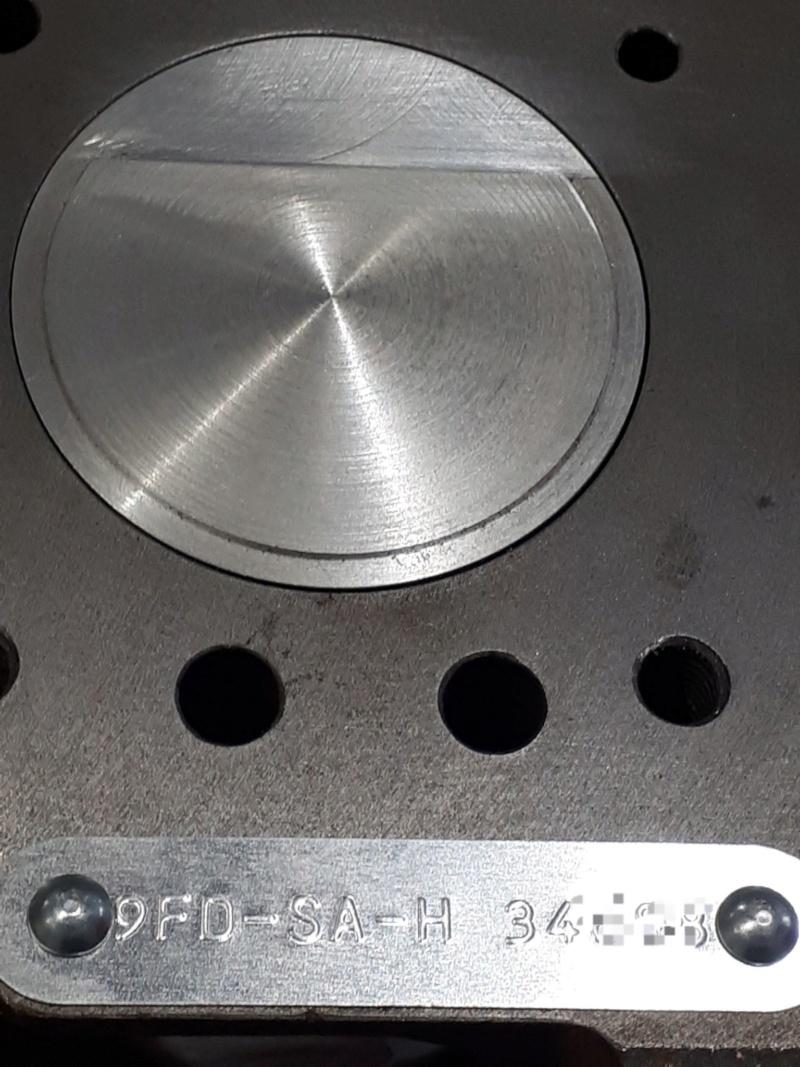 quels pistons pour remplacer des pistons en D 73019910
