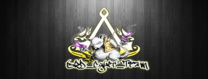 BRD[cyber]TEAM