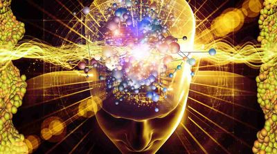Comment se repérer dans le domaine complexe des Sciences Cognitives 45364510