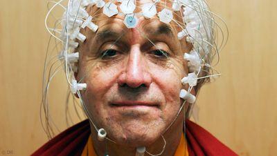 Comment se repérer dans le domaine complexe des Sciences Cognitives Images10