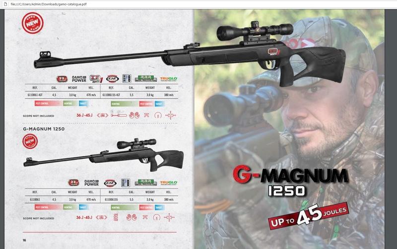 Gamo G-Magnum 1250 IGT Mach 1  CAL 22   5.5 - Page 2 Sans_t10
