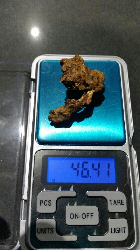 GPZ 14 inch Coil Gold_n11