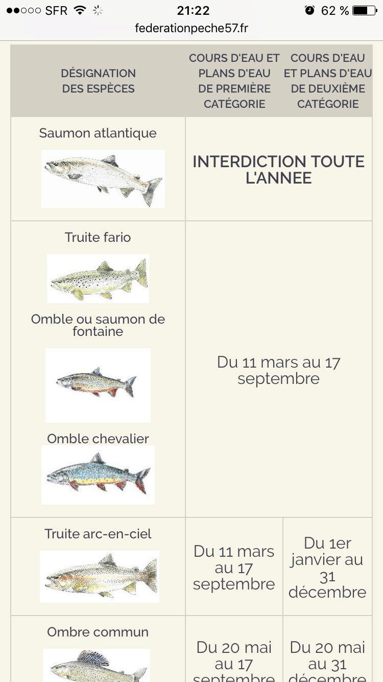 Carte de pêche 2017  - Page 3 Img_0111