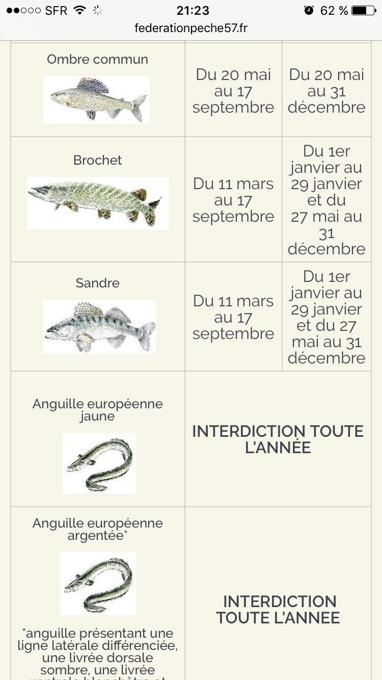 Carte de pêche 2017  - Page 3 Img_0112