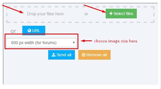 Forum FAQ. Screen11