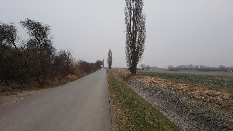 64560 Riedstadt-Leeheim -> Baggersee Kiebert  20170123