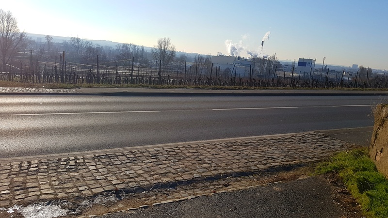 """65239 Hochheim - Mainz-Kostheim - Regionalpark Rhein-Main/""""Aussichtskanzel Vogelnest"""" 20170151"""