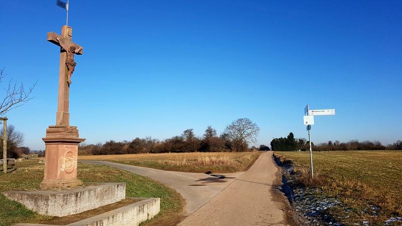 """65239 Hochheim - Mainz-Kostheim - Regionalpark Rhein-Main/""""Aussichtskanzel Vogelnest"""" 20170155"""