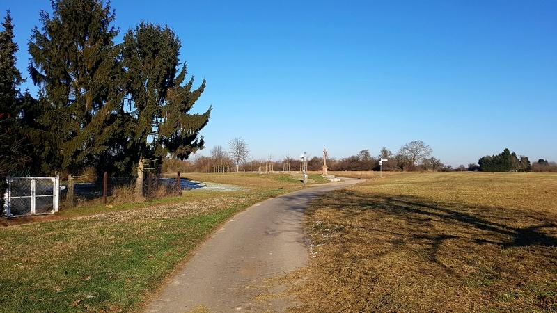 """65239 Hochheim - Mainz-Kostheim - Regionalpark Rhein-Main/""""Aussichtskanzel Vogelnest"""" 20170157"""