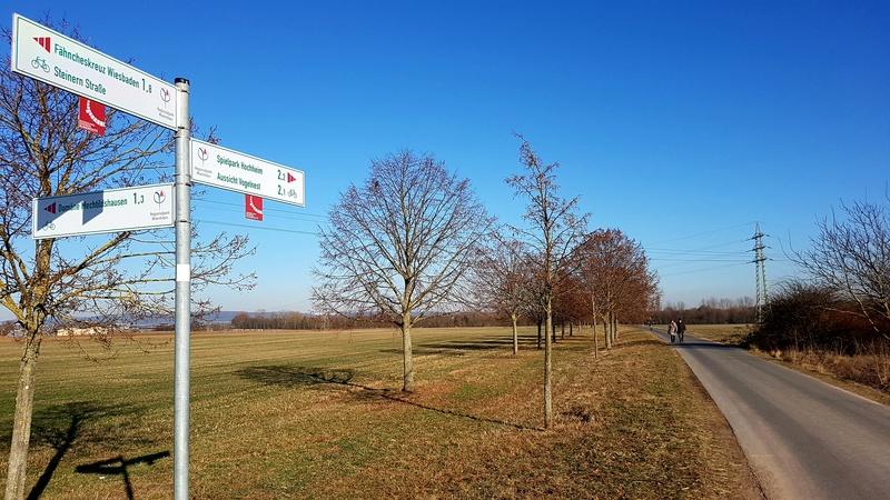 """65239 Hochheim - Mainz-Kostheim - Regionalpark Rhein-Main/""""Aussichtskanzel Vogelnest"""" 20170163"""