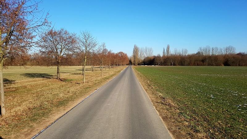 """65239 Hochheim - Mainz-Kostheim - Regionalpark Rhein-Main/""""Aussichtskanzel Vogelnest"""" 20170164"""