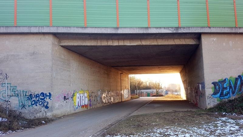 """65239 Hochheim - Mainz-Kostheim - Regionalpark Rhein-Main/""""Aussichtskanzel Vogelnest"""" 20170166"""