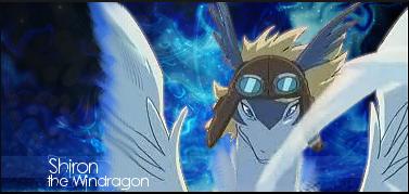 Pokemon Chronicle Gold 38084313