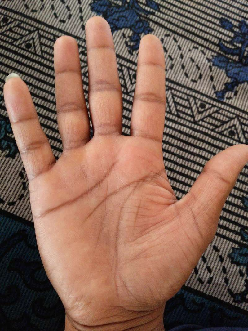 This is my palm can anyone  predict my future  Img_2012