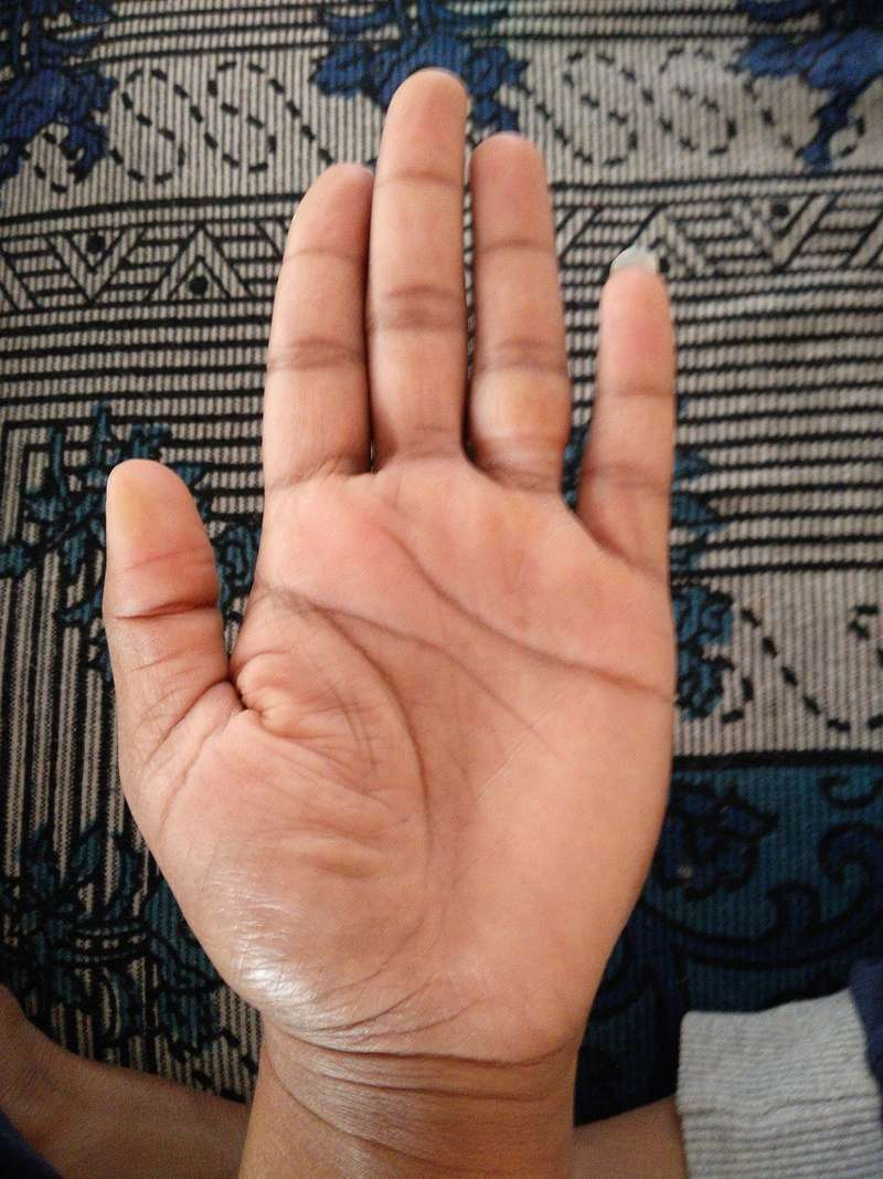 This is my palm can anyone  predict my future  Img_2013