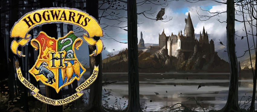 Hogwarts School of Witchcraft and Wizard