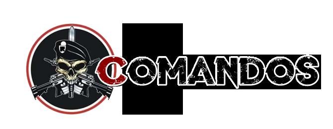 [MANUAL] ROTA Comand11