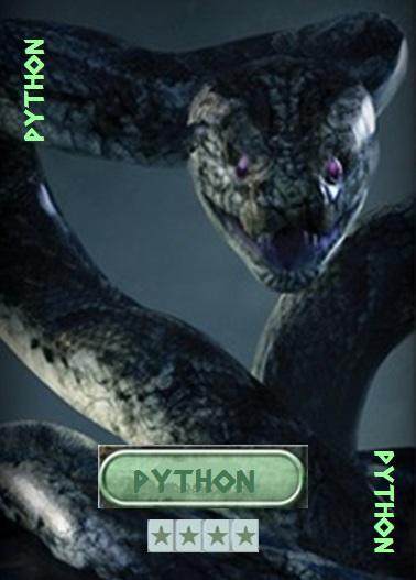 Python Card Python12