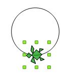 Il fiore verde Cerchi10
