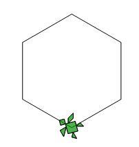 Il fiore verde Esagon10