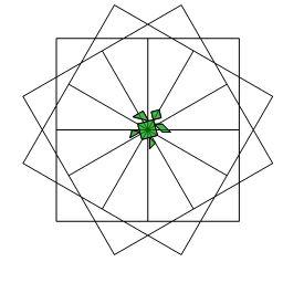 Il fiore verde Fiore10