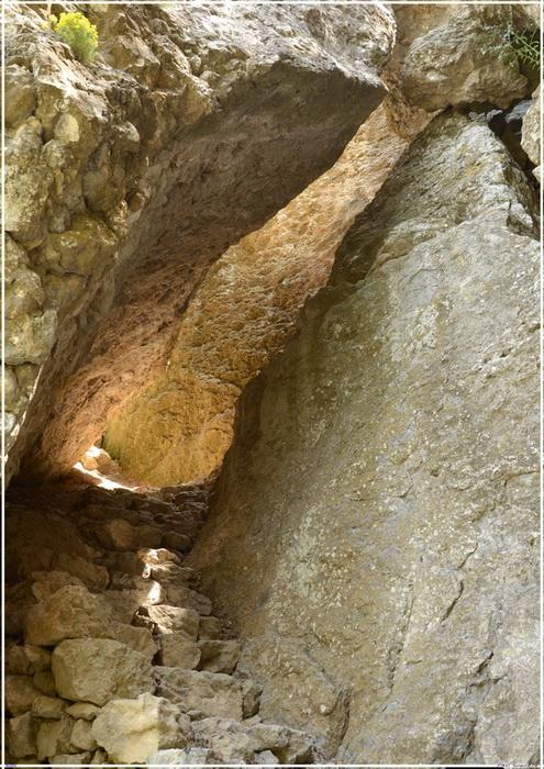 Деревья на скалах - Страница 4 1_ed3513
