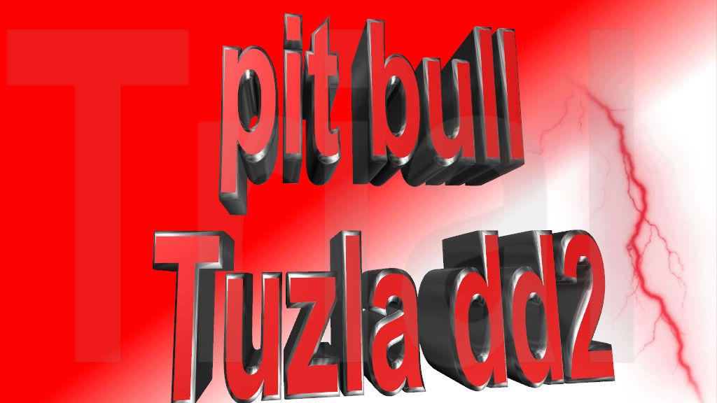 Pit - Bull -Tuzla - de_westwood