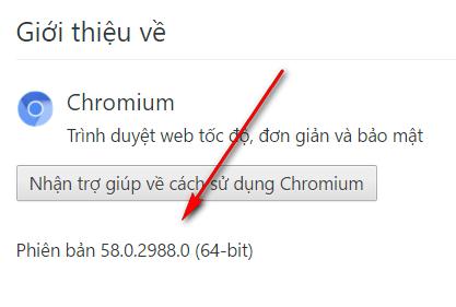chronium 58.0.2988 tiếng việt 110