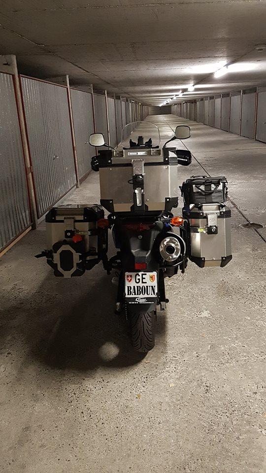 V-Strom 650 k9 de baboun  14457210