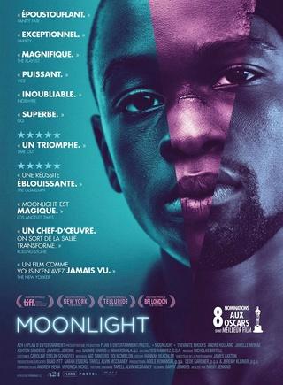 Moonlight 11463610