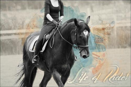 Life of Rider