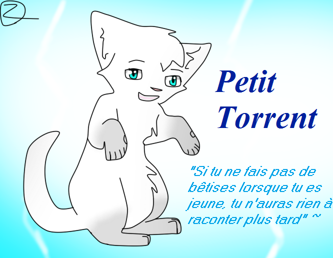 Journal de Bord de Petit Torrent ~ - Page 3 31239710