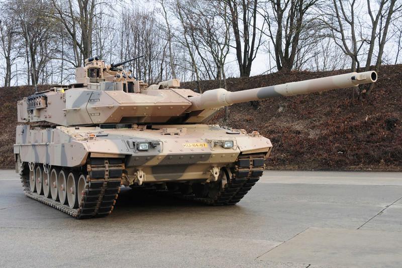 Leopard 2 Dsc_0311