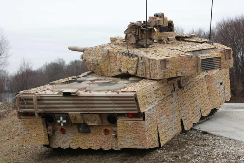 Leopard 2 Img_0511