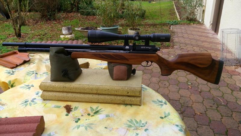 Quelle carabine choisir AA S510,  daystat huntsman ou HW100  Img_2011