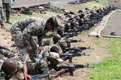 Forces Armées Camerounaises - Page 4 A1581910