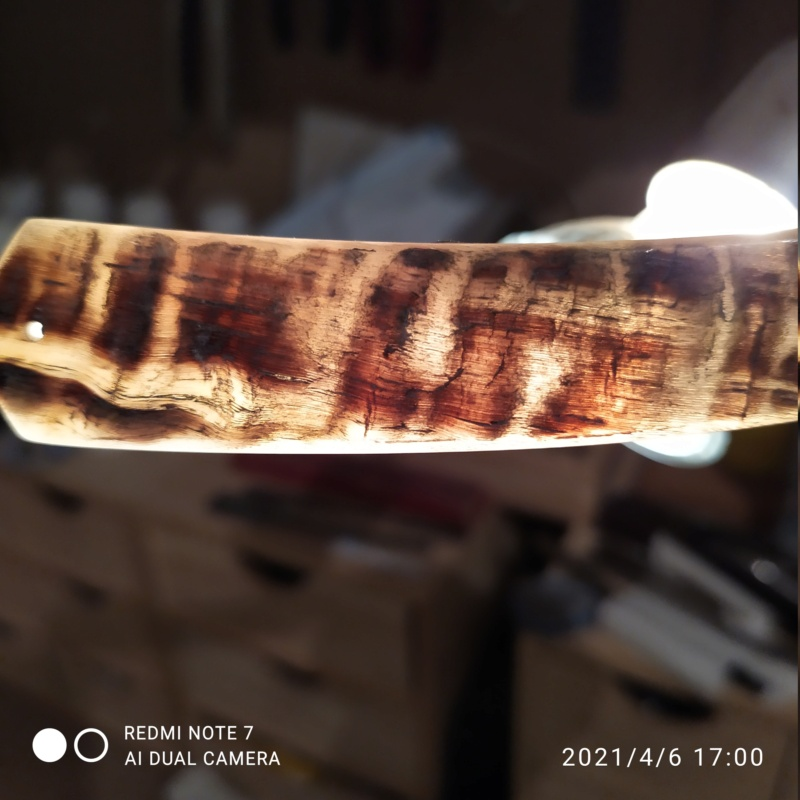 croûte de bélier - première châsse Img_2014