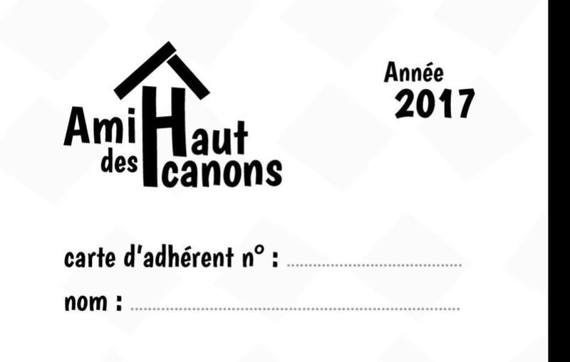 Organisation de la soirée du 17 Février - Page 2 Logo110