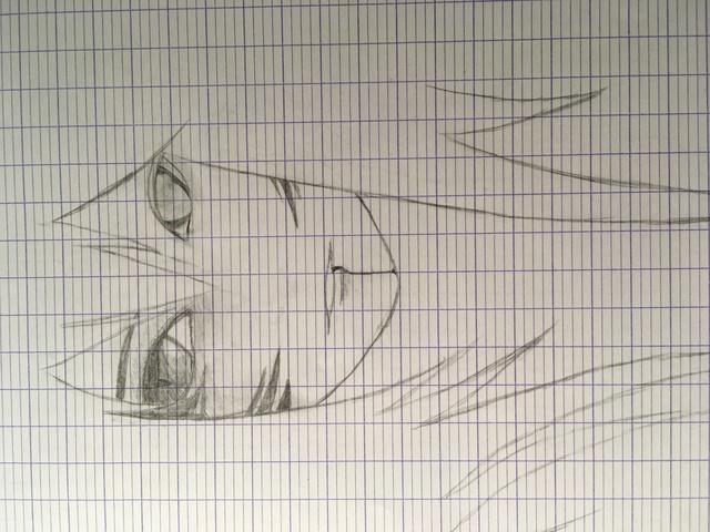 Une feuille et un crayon Img_2714