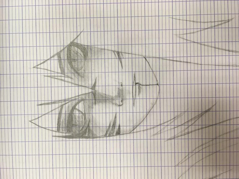 Une feuille et un crayon Img_2715