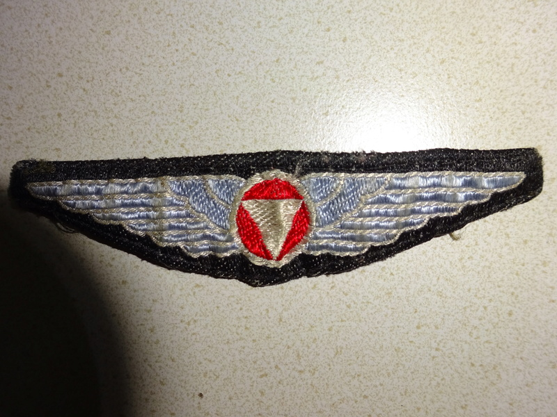 special Austrian Army textiles (not item BUT color) Dsc00419