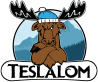Forum des Teslalom