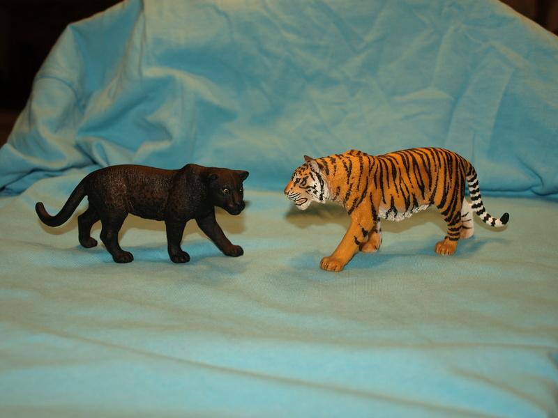 my new collection Barti black jaguar 2017 P2128518