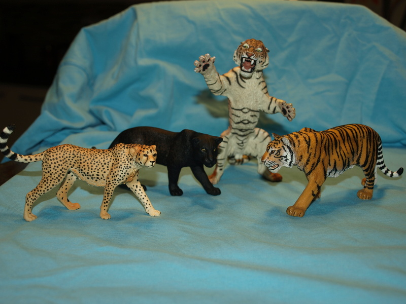my new collection Barti black jaguar 2017 P2128519