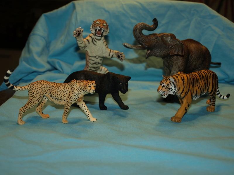 my new collection Barti black jaguar 2017 P2128520
