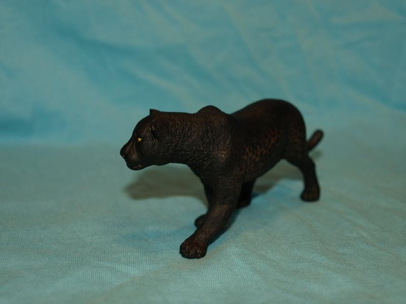 my new collection Barti black jaguar 2017 P2128525