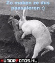 Even lachen...... - Page 2 42922810