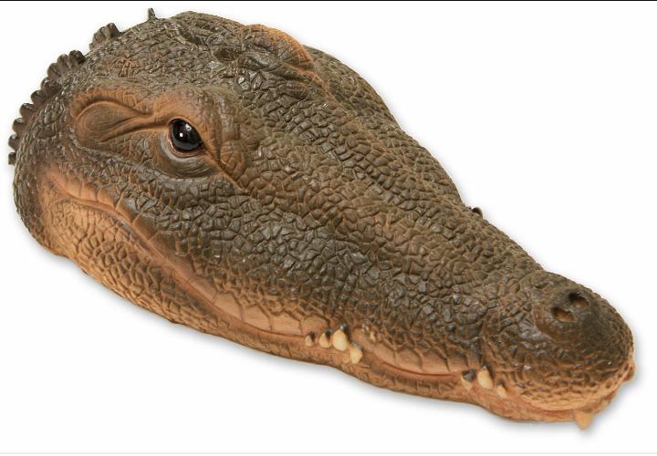 Exhibition : Killer Croc contre Mister Satan 20180910