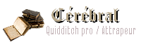 Sorcier cérébral - Joueur de Quidditch pro / Attrapeur